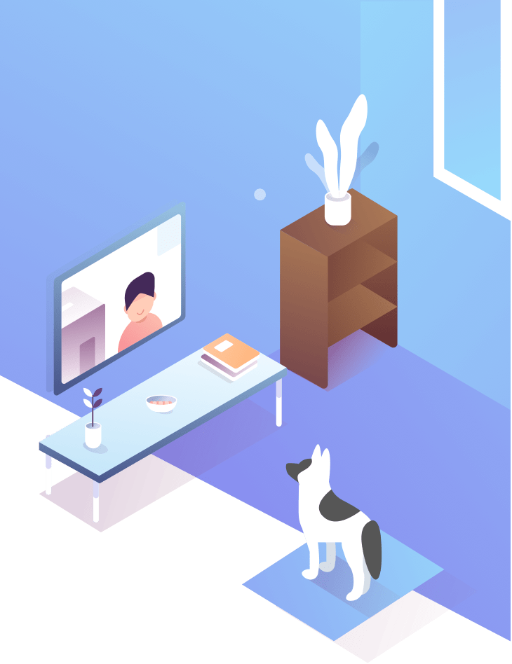 pets sitter